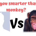 You vs Monkey: Are you smarter than a monkey? IQ test 7