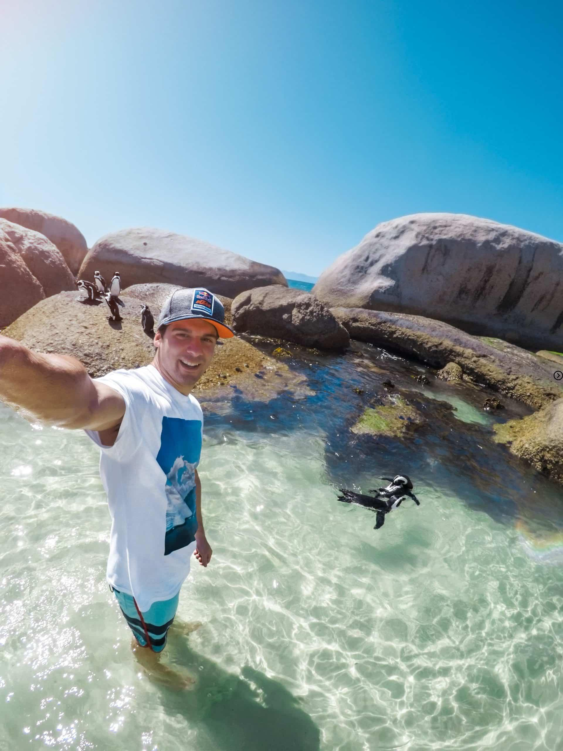 Which animal is famous is boulders beach? 3