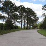 Blanchard Park, Orlando, FL Photo gallery 6
