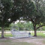 Blanchard Park, Orlando, FL Photo gallery 9