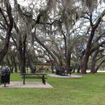 Blanchard Park, Orlando, FL Photo gallery 11