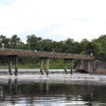 Blanchard Park, Orlando, FL Photo gallery 15
