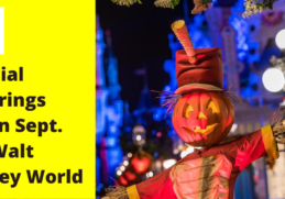 Festive Fall Joy in Disney World 7