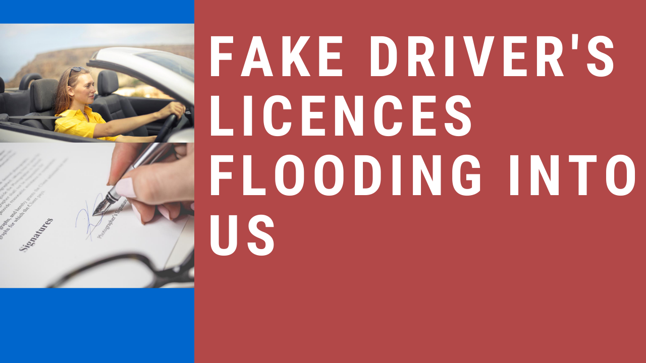 Online Fake License and Documents' Fraud, EXPOSED in 2020 1
