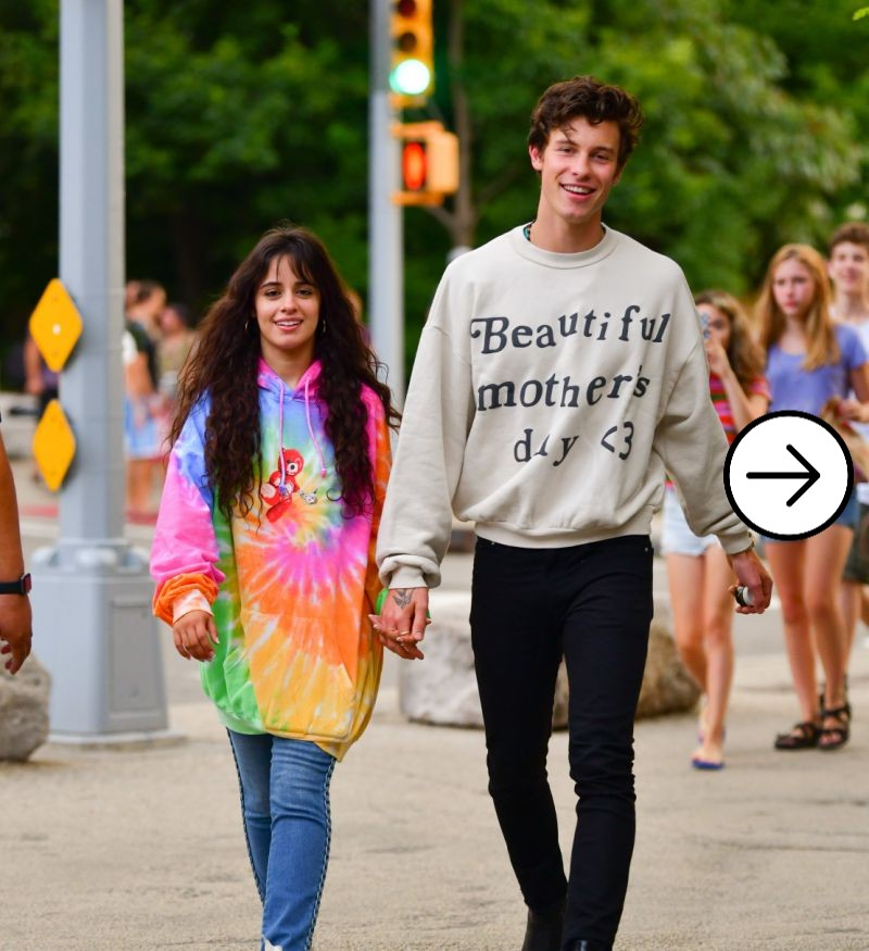 Shawn Mendes and Camila Cabello cute chemistry 2