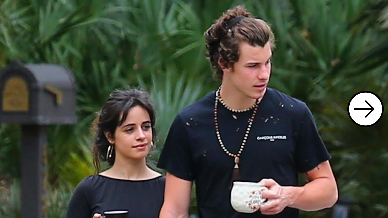 Shawn Mendes and Camila Cabello cute chemistry 6