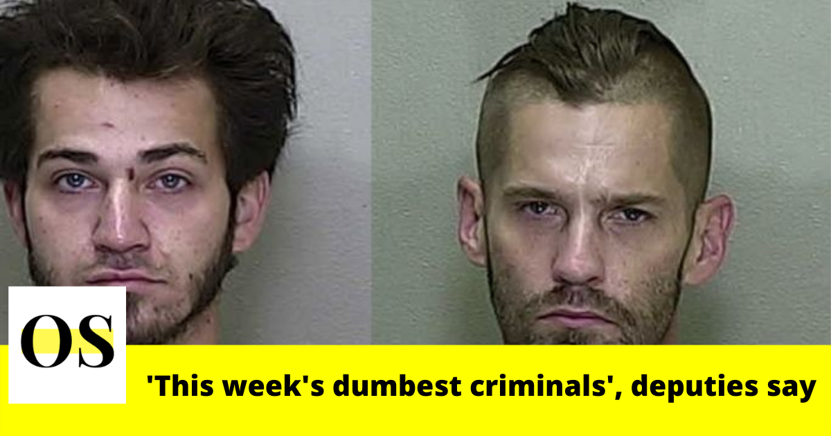 'This week's dumbest criminals' , said Marion County Sheriff's Office 2
