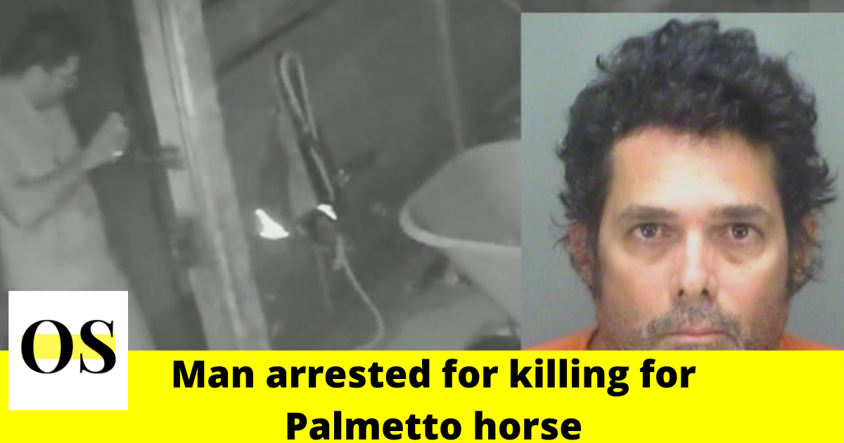 50-year-old Pinellas man arrested for slaughtering Palmetto horse 1