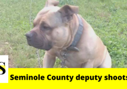 A deputy shoots dog in Seminole County; the owner files lawsuit 9