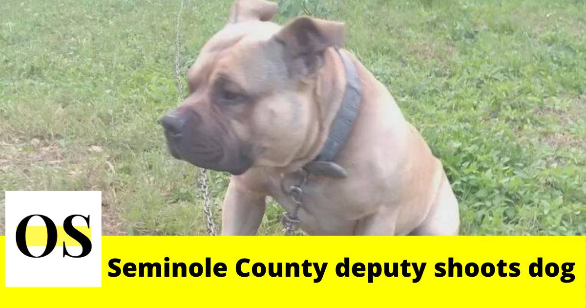 deputy shoots dog in Seminole County