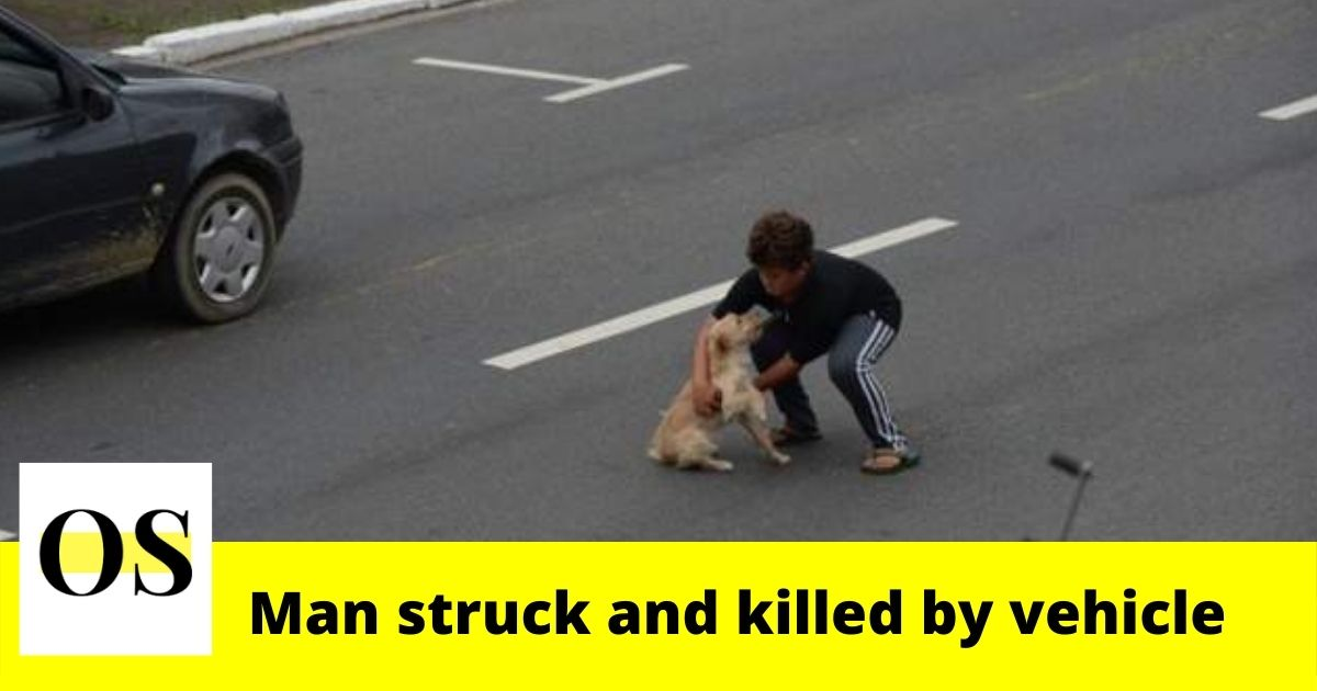 55-year-old man struck and killed by vehicle while trying to help dog in Deltona 3
