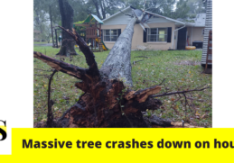"""""""Tree had hit directly over my son's head""""; tree crashed down on a house in Marion County 11"""