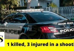 1 dead, 3 injured in a fatal shooting in Miami 11