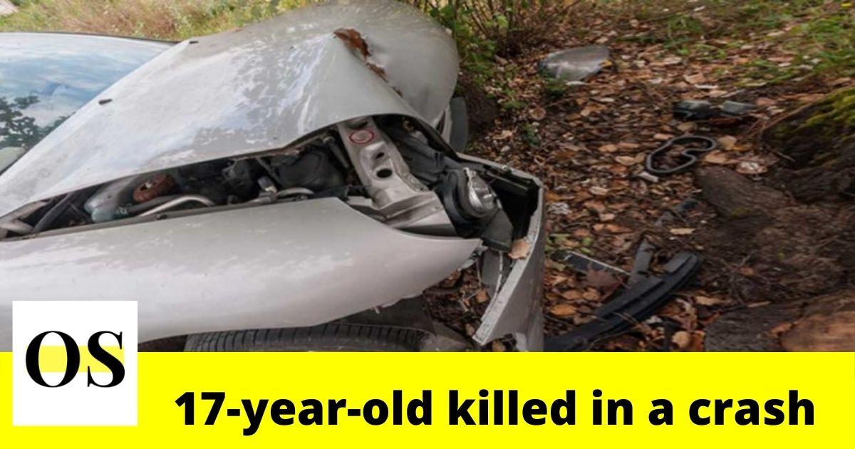 17-year-old killed in crash in Putnam County 3