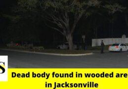 Woman's dead body found in wooded area in Jacksonville 4