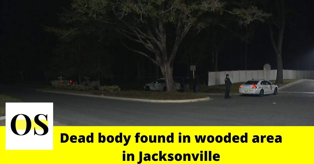 Woman's dead body found in wooded area in Jacksonville 3