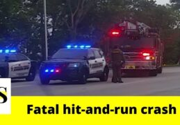Woman killed in a fatal hit-and-run crash in North Lauderdale 2