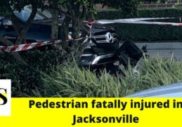 Pedestrian hit by a car and fatally injured in Jacksonville 13