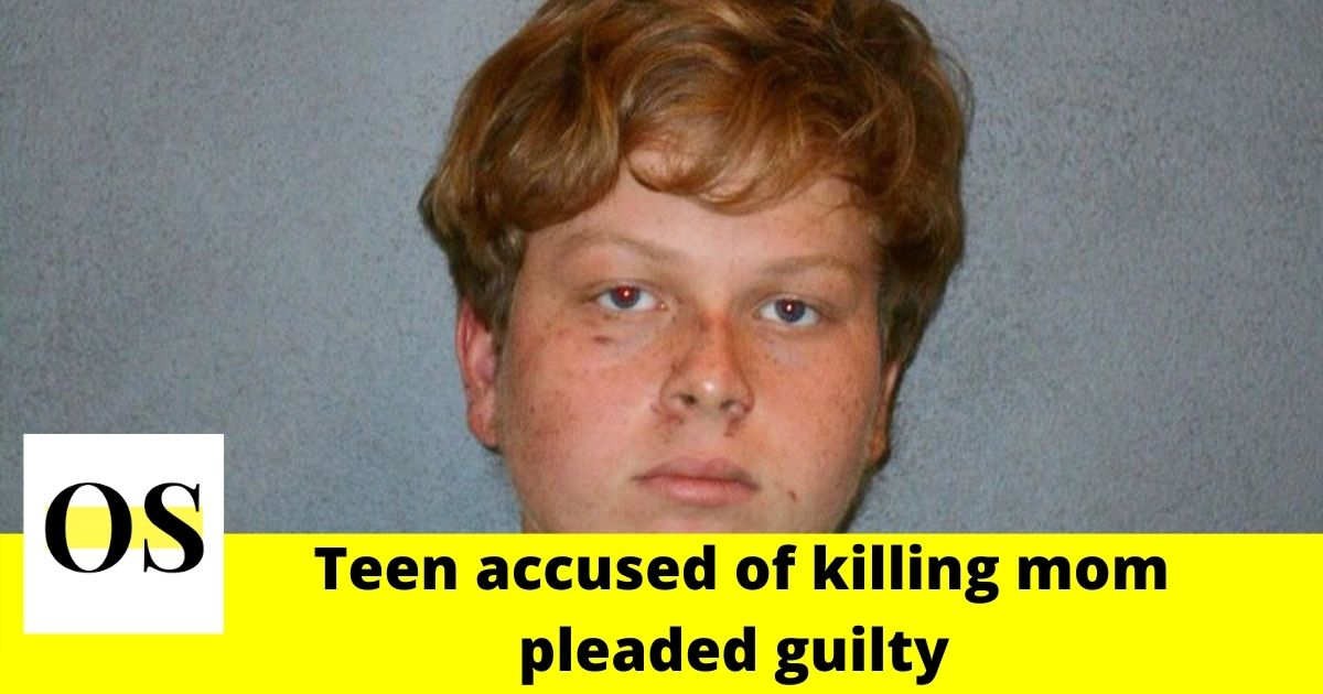 DeBary teen accused of killing mom after an argument over grades pleaded guilty 1
