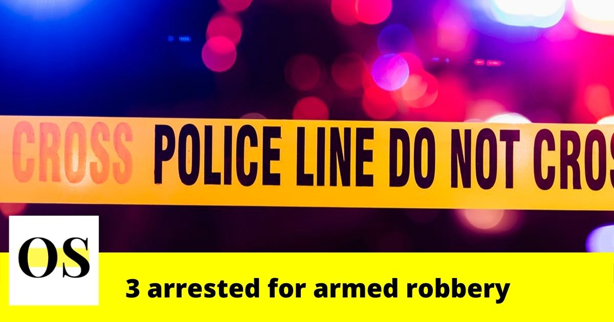 17, 20 and 30-year-old arrested for armed robbery in Ruskin 1