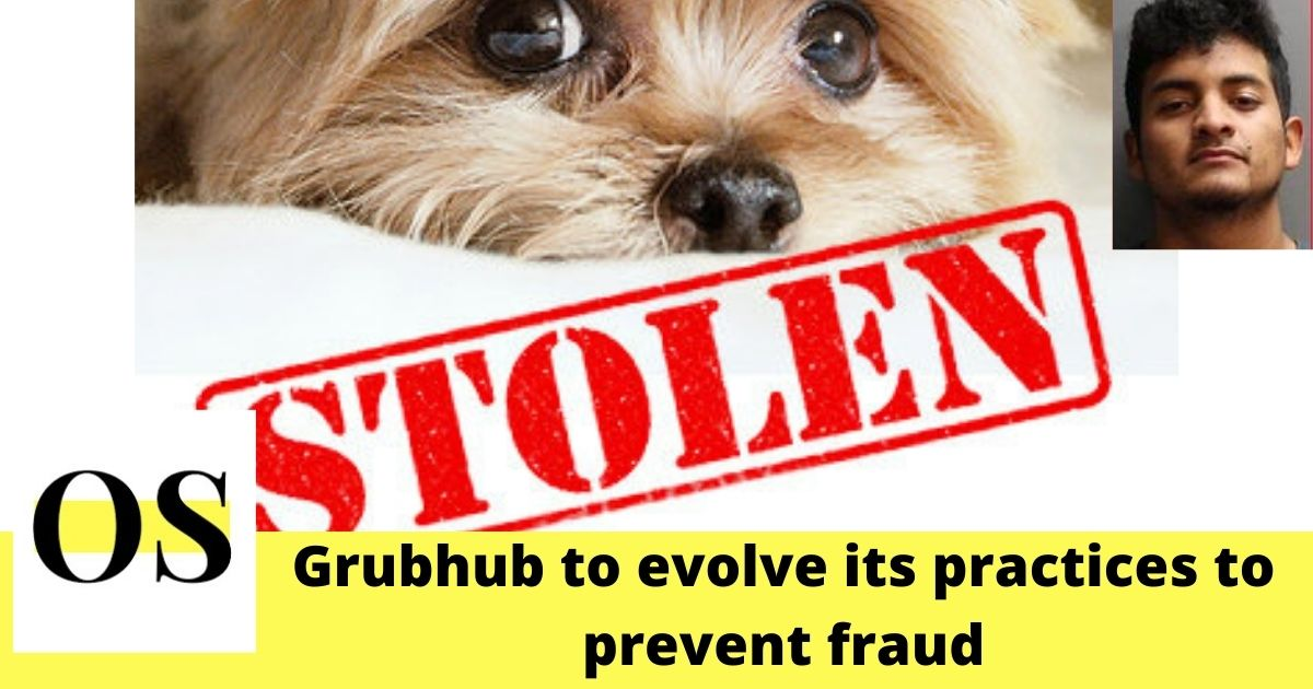 $4000 puppy stolen by a pizza delivery man claimed to be from Grubhub in Jacksonville Beach 1