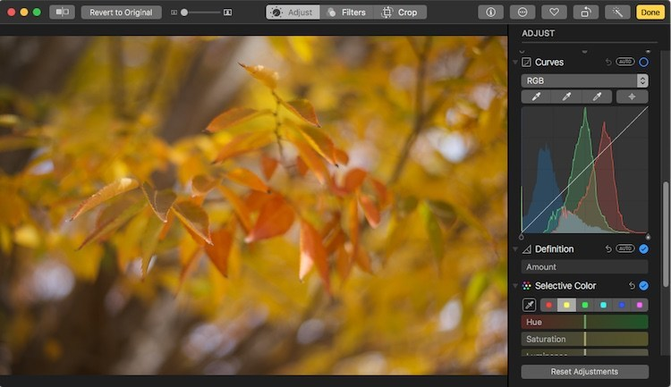 Top 10 tips for mastering Apple's Photo App. 4