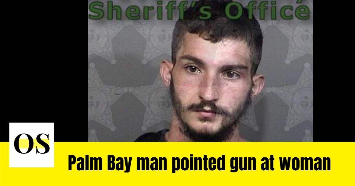 Logan Fox pointed a handgun at a woman during road rage incident